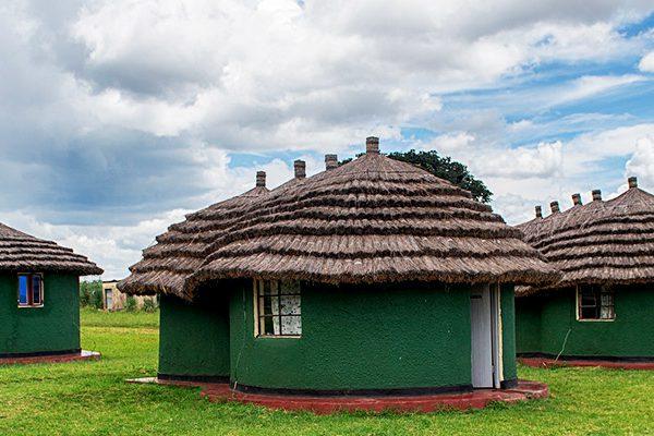 Kidepo Valley Wildlife Uganda