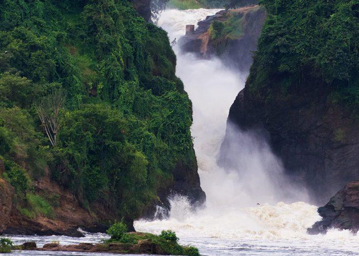 murchison-falls-uganda-safaris